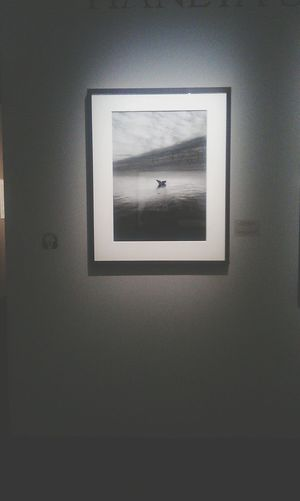 Salgado Photography Exibition Picture