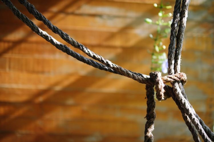 Close-up of rope tied on metal chain