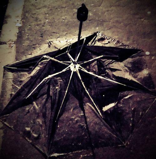 Still Life Umbrella Street Photography Rain Broken Umbrella Black And White Black & White