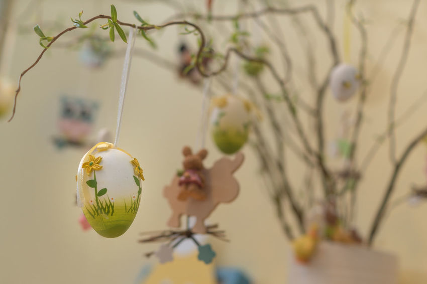 Easter tree Easter Easter Eggs Easter Tree Tradition Close-up Day Decoration Easter Decoration Egg Focus On Foreground Indoors  No People