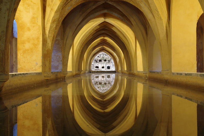 Reflection of ribbed vault ceiling in water