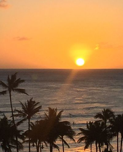 Pacific Sunset Tropics Pacific Ocean View Sky Ocean And Sky Ocean Sunset  Oahu, Hawaii Island Of Oahu, Hawaii Pacific Ocean Sky Hawaiian Sunset Palm Trees 🌴 No People No Filters  An Eye For Travel