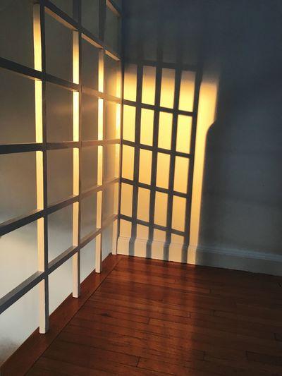 Sunlight falling on floor at home