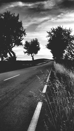 Lagoaça On The Road Portugal ☆ Monochrome Peaceful View