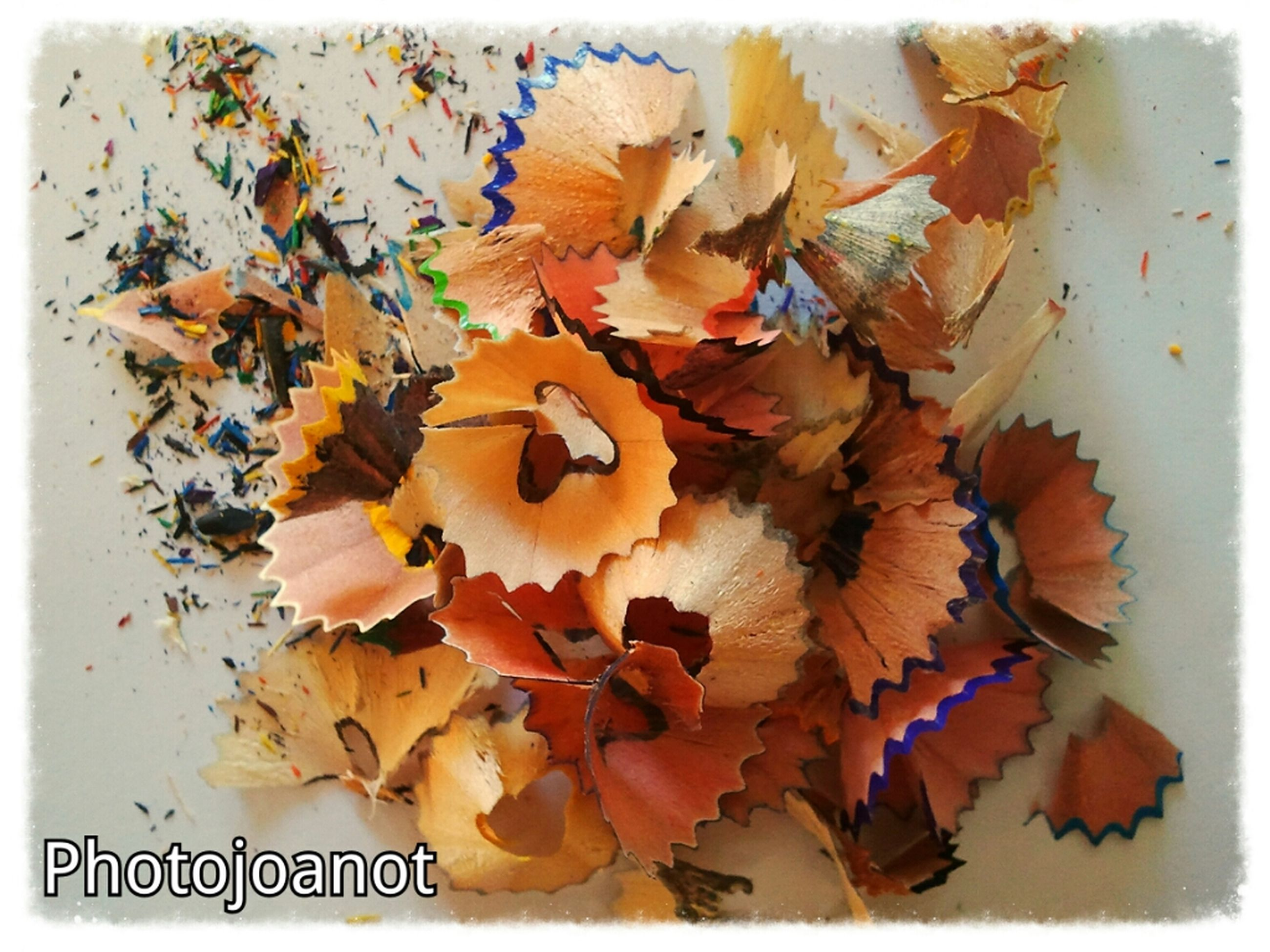 transfer print, auto post production filter, leaf, autumn, change, dry, close-up, orange color, high angle view, nature, season, growth, day, no people, leaves, fragility, outdoors, freshness, flower, beauty in nature