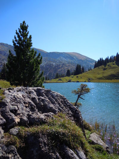seebersee Diemtigtal Water Switzerland Vacations BerneseAlps Hiking Nature Travel Destinations Outdoors Beauty In Nature Trees And Water