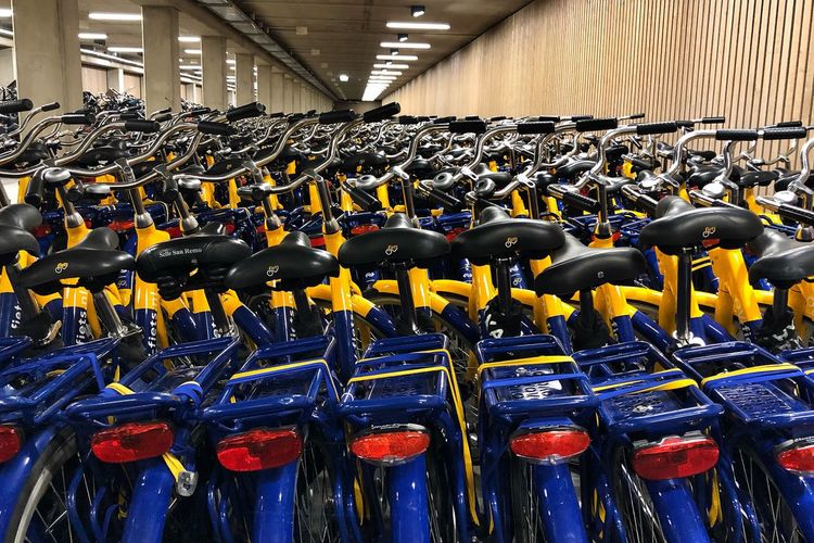 Dutch Train Dutch Sharing Economy Sharing Economy Dutch Bike Culture Dutch Bike NS Bikes In A Row Side By Side Abundance