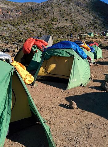 7summits SevenSummits Kilimanjaro Barranco Camp (3.900 M) FUJIFILM X-T1 EyeEmNewHere Tanzania Tansania Mount Kilimanjaro Outdoors Mountain Trekking Tents Camp Adventure