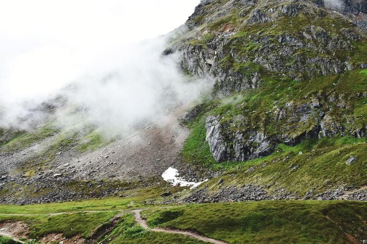 Alaskan Nature