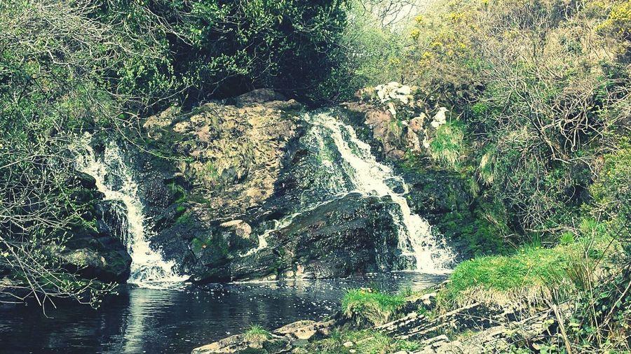 Ireland🍀 Lissycasey Cascades Waterfall Nature
