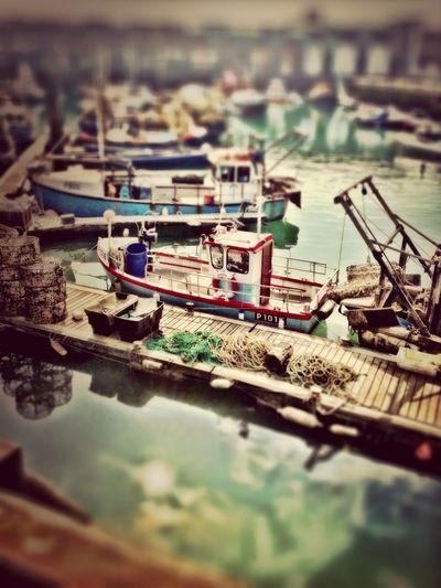Micro Fishing