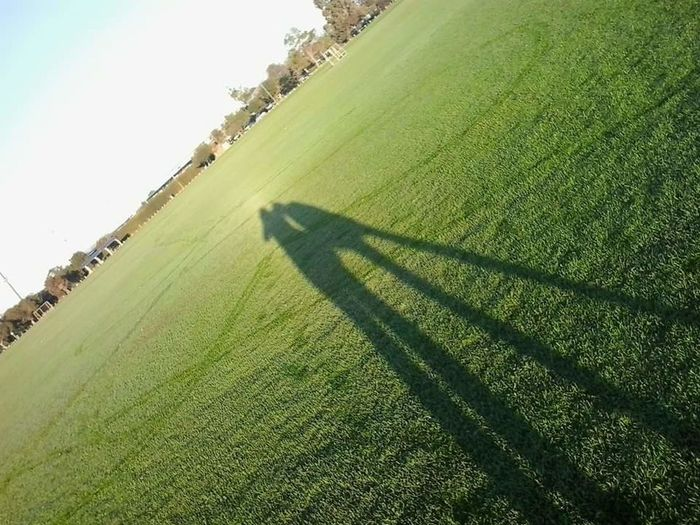 Agriculture Rural Scene Farm Growth Nature Landscape Green Color Field No People Beauty In Nature Outdoors Day Shadow Shadow And Light Shadows And Silhouettes Sun Oval Space Grass Area Shadows On Grass Silhouette Selfie