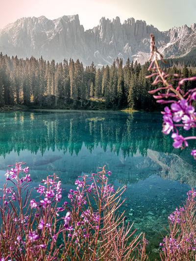 Scenic view of lake against mountain range