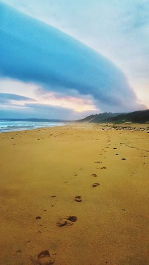 footprints and