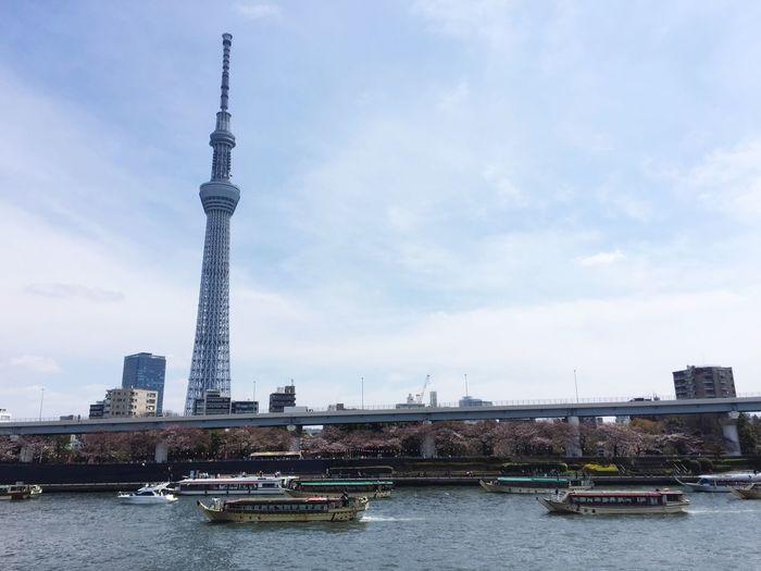 Sky Tower City