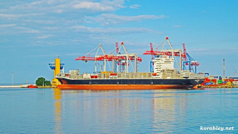 Container ship of port