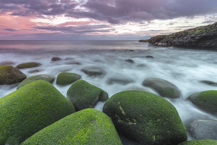 Green Color Leefilters Long Exposure Rocks Sea Seascape Sunrise Weed