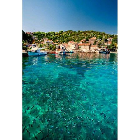 So, I have a friend living in beautiful Croatia. Think it's about time to visit her! 😍 Prettycroatia Croatia Sea Fish Nature Prettynature Boat Clearwater Mashaallah Wonderful World