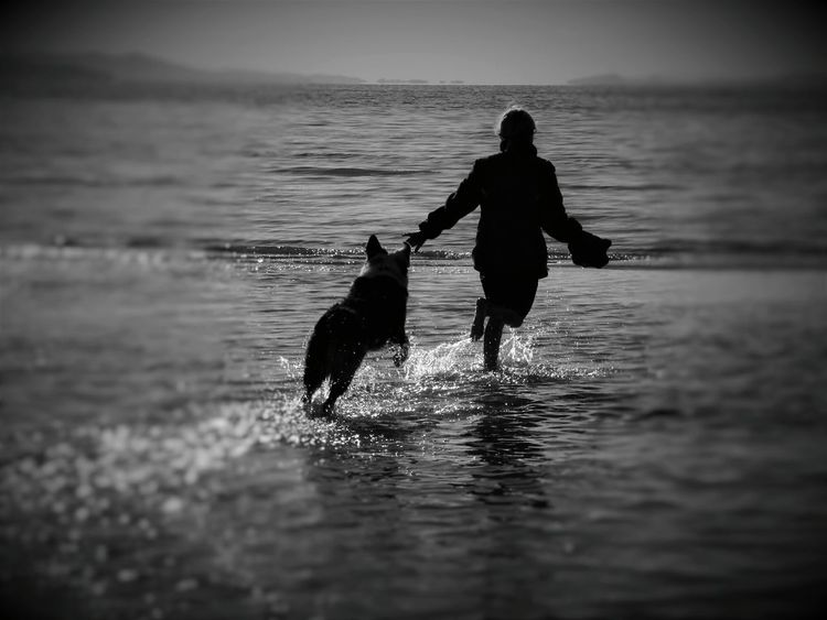 Water Water_collection Water Reflections Fun Dog Playing Child Children Blackandwhite Black & White Focal Point Utahgram Utah Great Salt Lake Summertime Essence Of Summer EyeEm Best Shots Nature_collection Nature Photography