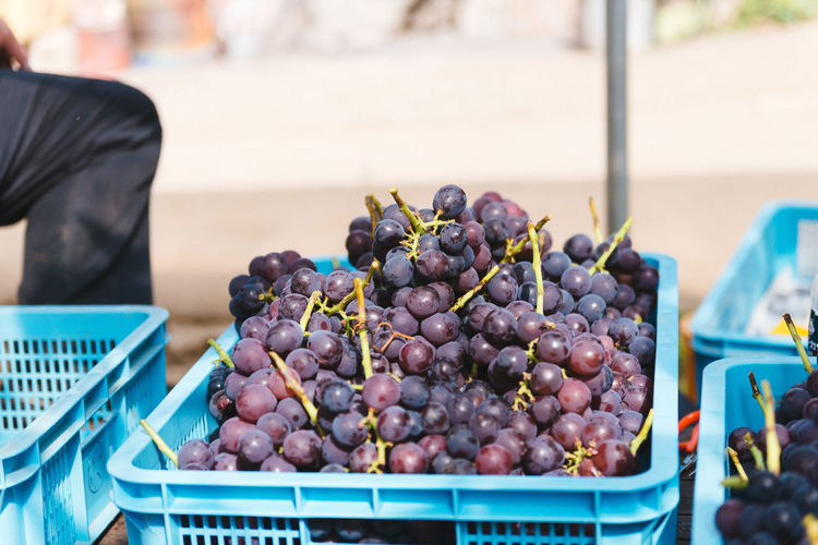 Harvesting of wine grapes in Yamanashi, Japan. Close-up Day Food Food And Drink For Sale Freshness Harvest Indoors  Indulgence Large Group Of Objects No People Ready-to-eat Sweet Food Temptation Unhealthy Eating Vegan