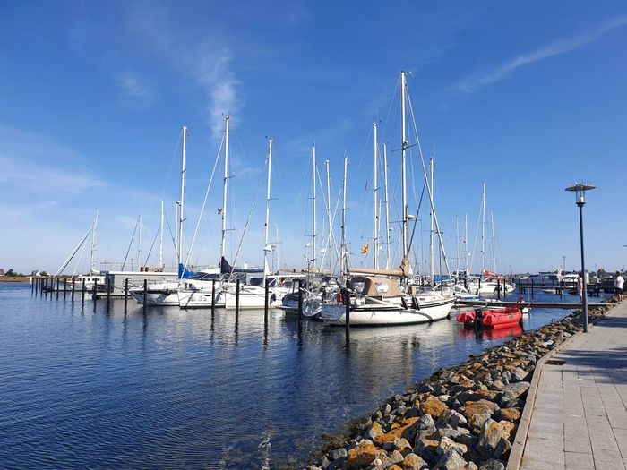 Sailboats moored at harbor against blue sky
