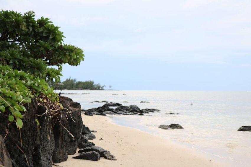 Mauritius 2016 Mauritius Beach Photography Beach Strand ♥ Urlaub Urlaub ❤ Sunset Weisser Strand Meer Ozean Indischer Ozean Water Wasser Landscapes With WhiteWall