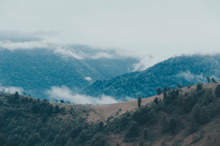 This goes beyond me, beyond you. Mountain Scenics - Nature Tree Beauty In Nature Sky Environment Tranquil Scene Landscape Tranquility Non-urban Scene Mountain Range Land Nature Plant High Angle View Day Cloud - Sky