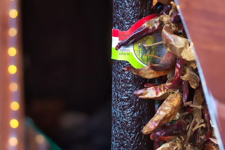 Close-up of food hanging