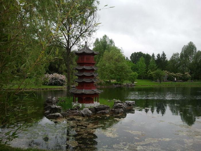 Garden Chinese Garden Gärten Der Welt Pagode Water Pond Trees Plants Stones Architecture Day Flowers Overcast Sky