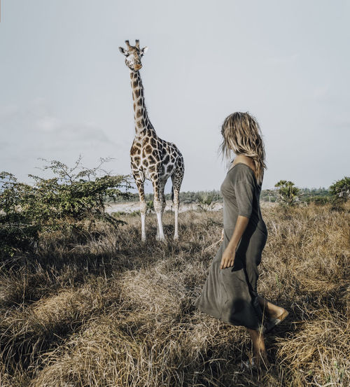 Full length of woman standing on field with giraffe