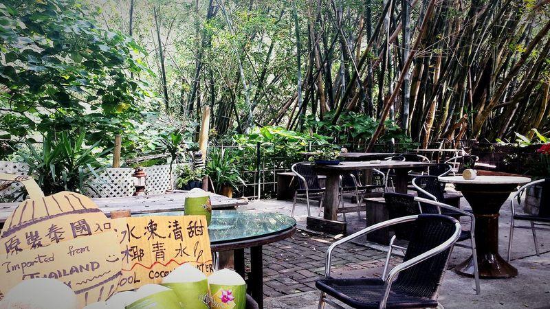 Quiet retreat on Lantau Island Taking Photos Enjoying Life Peacefulview Love Life ❤ Join Me Coconut