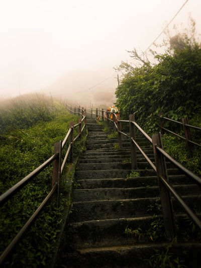 Low angle view of steps during foggy weather