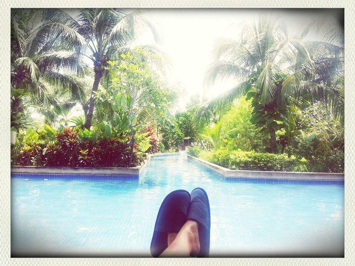 my holiday.