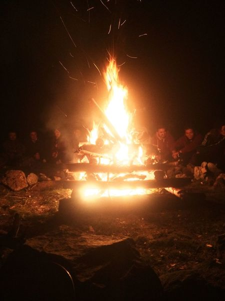 Walking Around Fire Camping Friends Enjoying Life Scout Forest Nature Stars Night