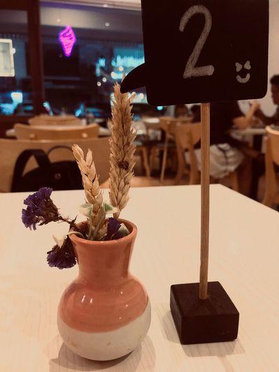 No People Plant