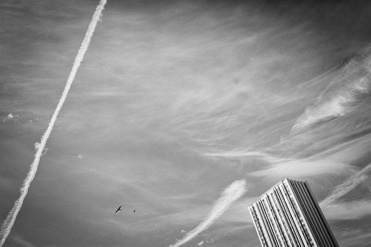 Strange Parisian Sky Watching The Sky Clouds And Sky BNW PARIS Living Photography