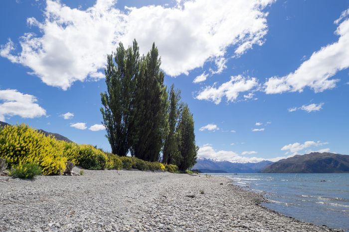 Camping Discover Your City Nature New Zealand Beauty New Zealand Landscape Wanaka Attraction Beach Beauty In Nature Cloud - Sky Day Discovery Lake Lakeshore Landscape Mountain Nature New Zealand No People Outdoors Sand Scenics Sea Sky Sunlight Tourism Tourist Destination Tranquil Scene Tranquility Tree Wanakalake Water