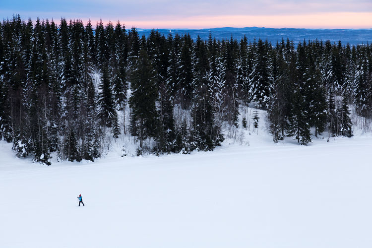 Loneliness Lonely Adventure Beauty In Nature Cold Temperature Cross Country Skiing Landscape Nature One Person Outdoors Scenics Ski Snow Tranquility Tree Winter