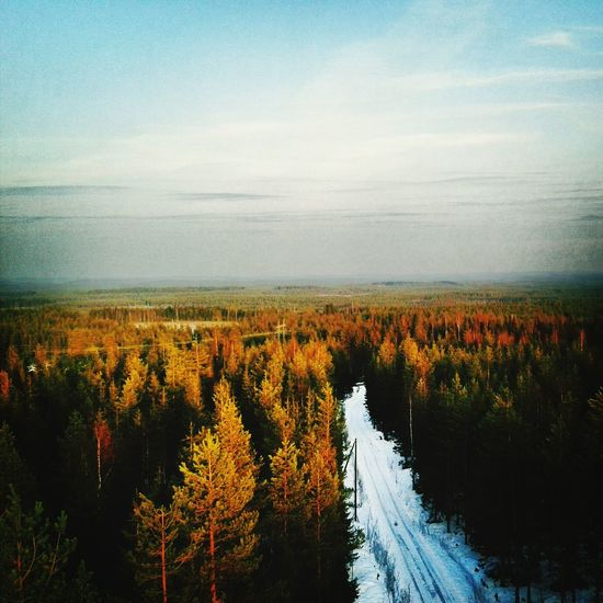 Totally Worth It Nature Throwback Finland