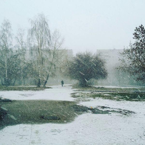 Снегопад Novosibirsk