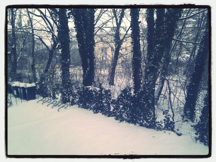 Enloser Schneefall.
