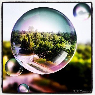 Work Photography Pipcamera
