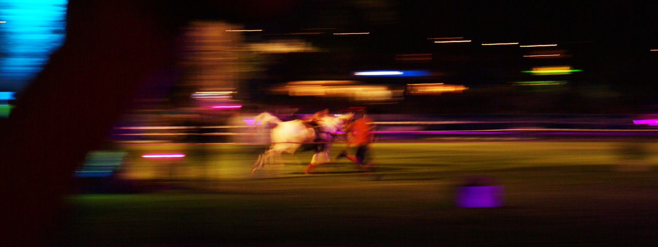 A racing quarter mile horse, with a man running a long. Made at a hosre show in WIesbaden, Germany. Action Blurred Motion Horse Illuminated Lifestyles Light Light And Shadow Long Exposure Men Motion Night Outdoors Pferd PfingstTurnier Quarter Mile Horse Quarterhorse Real People Road Run Running Speed Turnier