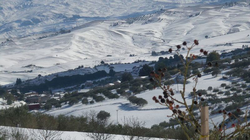 Snow Nature Tree Winter Cold Temperature Landscape Mountain Outdoors Beauty In Nature Day Scenics Ski Holiday No People Ski Lift Snow❄⛄ Extreme Weather Sicily Landscape Snow ❄