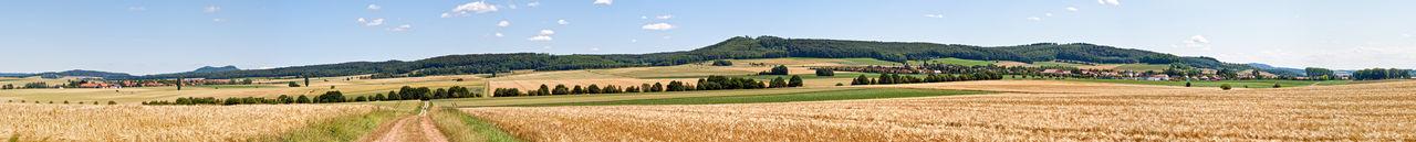 Landscape Landschaft Niedersachsen Deutschland Getreidefeld Groß Schneen Panorama Agriculture Cereal Plant Field Germany Landscape Landwirtschaft Leinetal Nature No People Outdoors Panoramic Rural Scene Summer