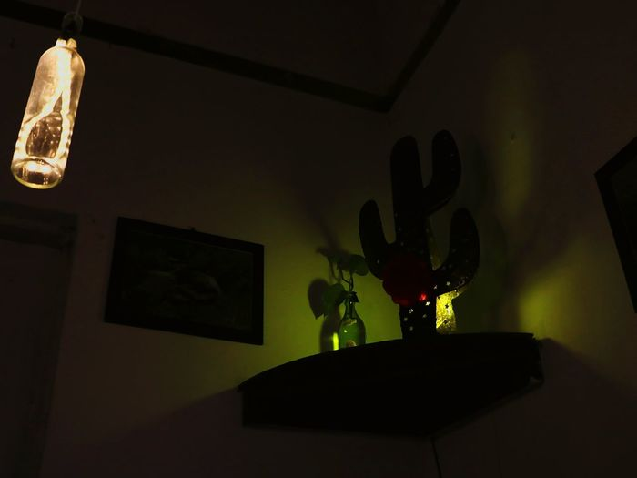 Lowlightphotography Cactus Fake Cactus Light And Shadow Wine Bottle Lamp The OO Mission 43 Golden Moments