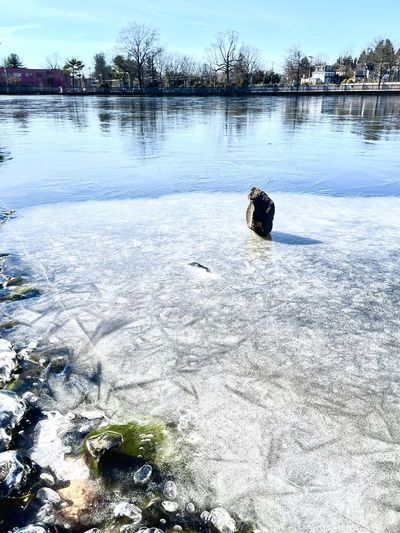 Person in frozen lake during winter