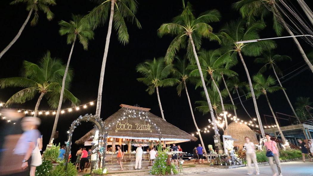 People Night Outdoors Tree Travel Sea Beach Samui Island Kosamui Thailand