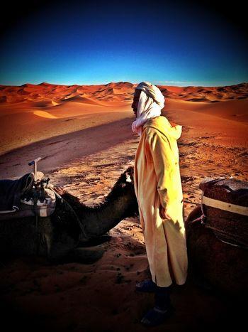Touareg Travel Photography Amazing View Amazing Place Touareg People Desert Deserts Around The World Beauty In Nature IPhoneography Camel Desert Beauty Desert Landscape