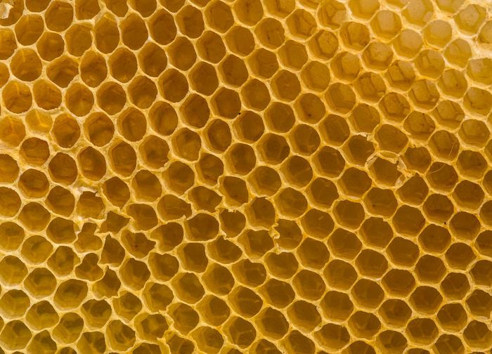 Abstract Animal Animal Scale Animal Themes Backgrounds Bienenwabe Close-up Design Extreme Close-up Full Frame Healthcare And Medicine Honeycomb Macro Natural Pattern Nature No People Pattern Repetition Science Shape Technology Textured